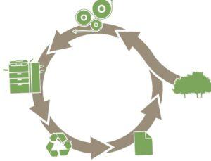 papeles ecolgicos